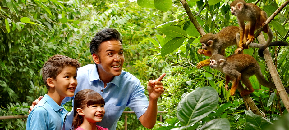 enjoy-a-family-holiday-river-safari-rect.jpg