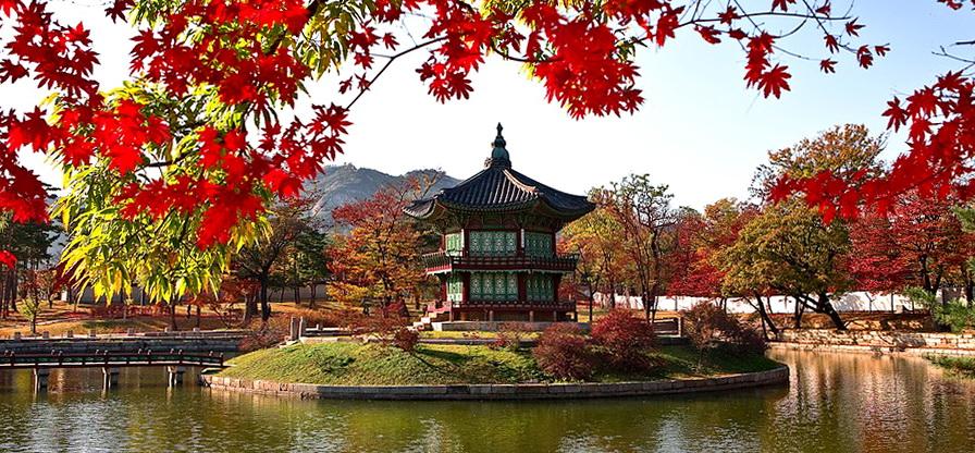 facing-garden-1214958_960_720.jpg
